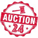 Auction 24 Bot